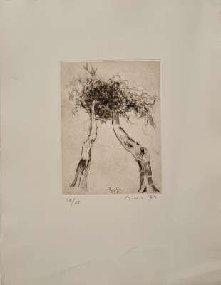 Plant pattern (Drypoint) - Zoran  MUSIC