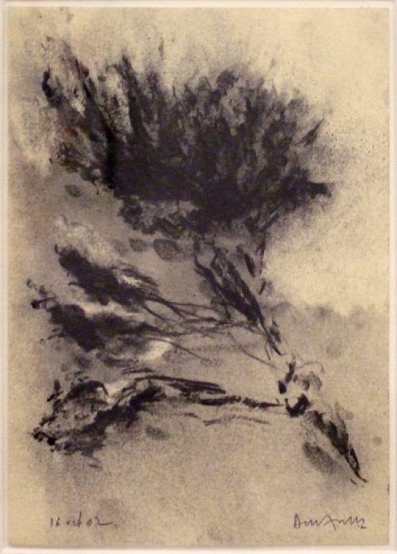 Arbre (Fusain) - Jean-Jacques  DOURNON