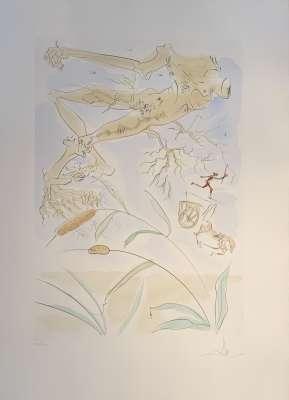 Le Bestiaire de La Fontaine dalinisé (Livre illustré) - Salvador DALI