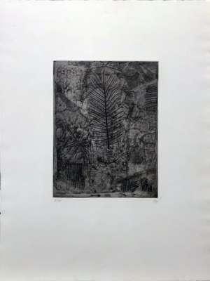 Leaf (Engraving) - Antoni CLAVE