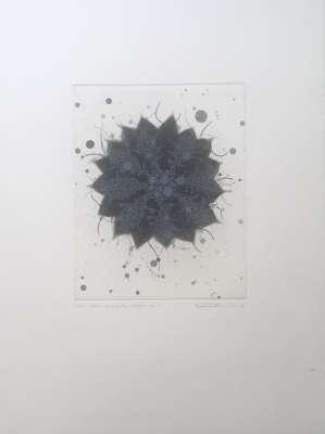 Fern - Butterfly effect a-1 (Gravure) - Seiko TACHIBANA