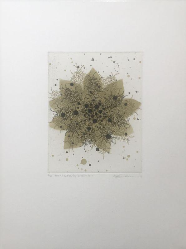 Fern - Butterfly effect e-1 (Gravure) - Seiko TACHIBANA