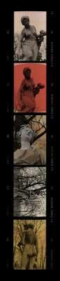 Tuileries - Cassandre (Tirage pigmentaire) - Elizabeth LENNARD
