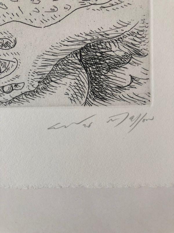Léda aux trois perles (Gravure) - André  MASSON