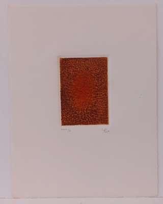 Terre brûlée (Engraving) - Arthur Luiz  PIZA