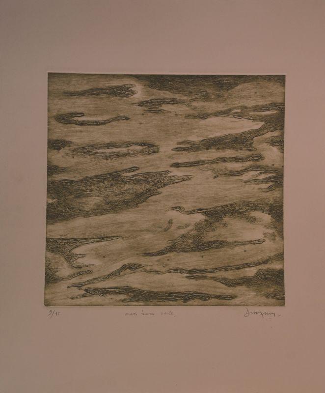 Marée basse verte (Gravure) - Jean-Jacques  DOURNON