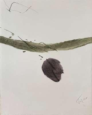 TAL-COAT / 10e anniversaire Fondation Maeght (Gravure) -  Artistes Divers