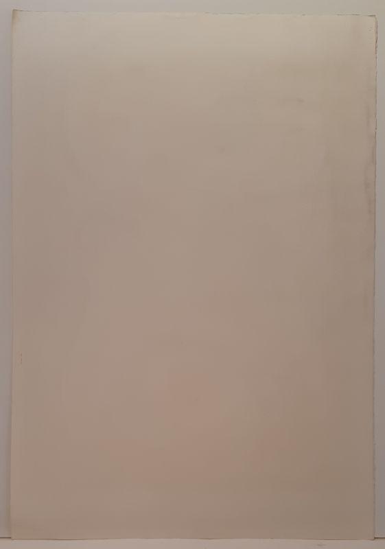 La métamorphose de la femme (Lithographie) - André  MASSON
