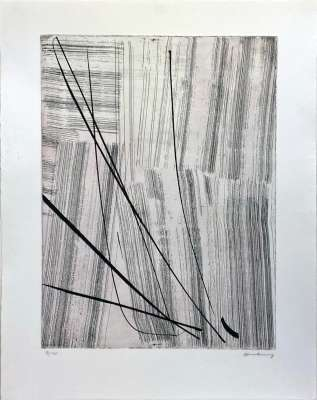 G20 (Eau-forte et aquatinte) - Hans HARTUNG