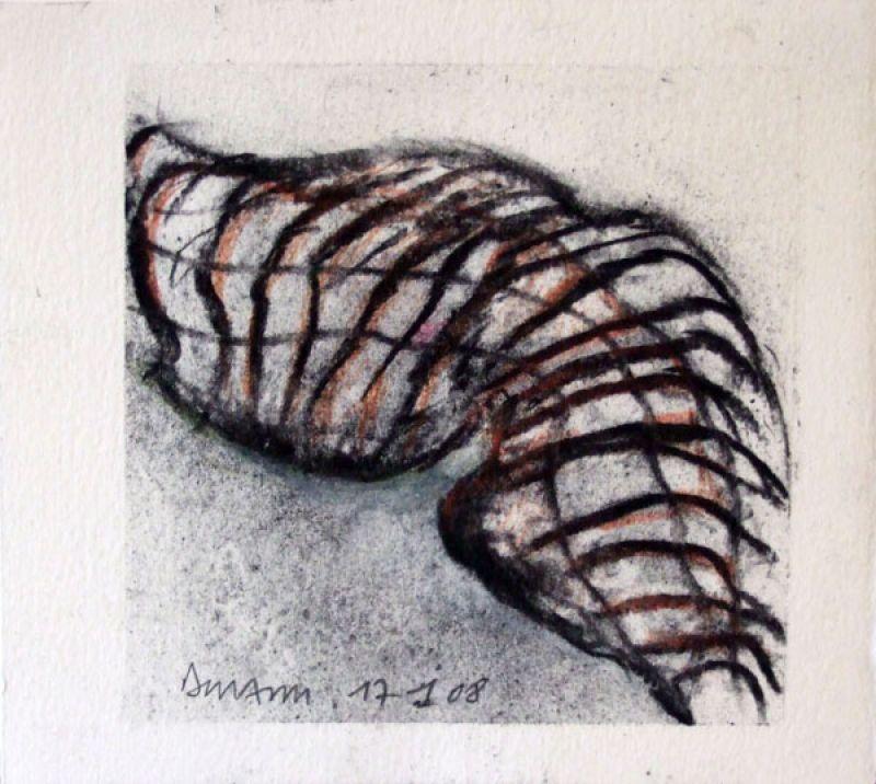 Maillages (Fusain) - Jean-Jacques  DOURNON