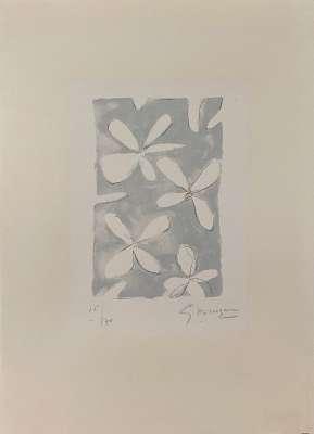 Fleurs (Lithographie) - Georges BRAQUE