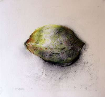 Lemon (Charcoal) - Jean-Jacques  DOURNON