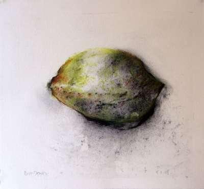 Citron (Fusain) - Jean-Jacques  DOURNON
